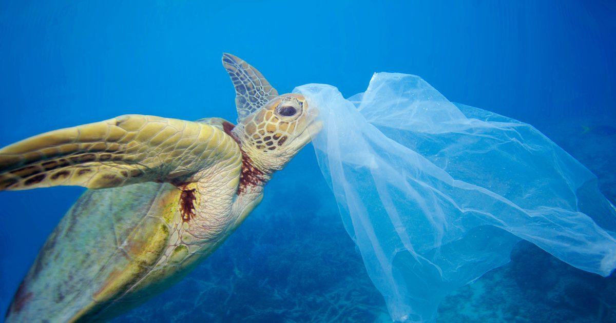 El Reciclado Químico, una solución innovadora clave para alcanzar la circularidad de los plásticos.